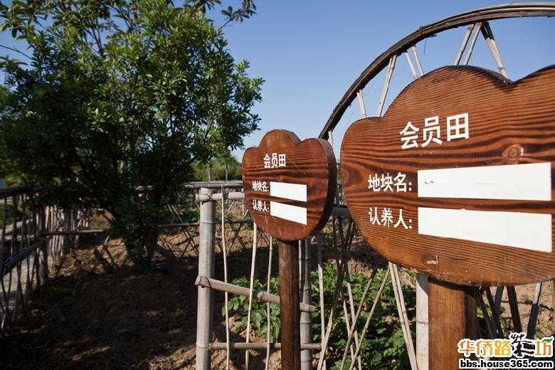 江宁杏花村 风景区平面图