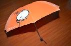 365雨伞