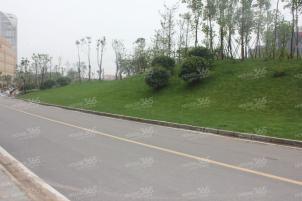 适合做教育培训虹悦城旁德盈国际广场1865产业园绿地之窗附近实拍