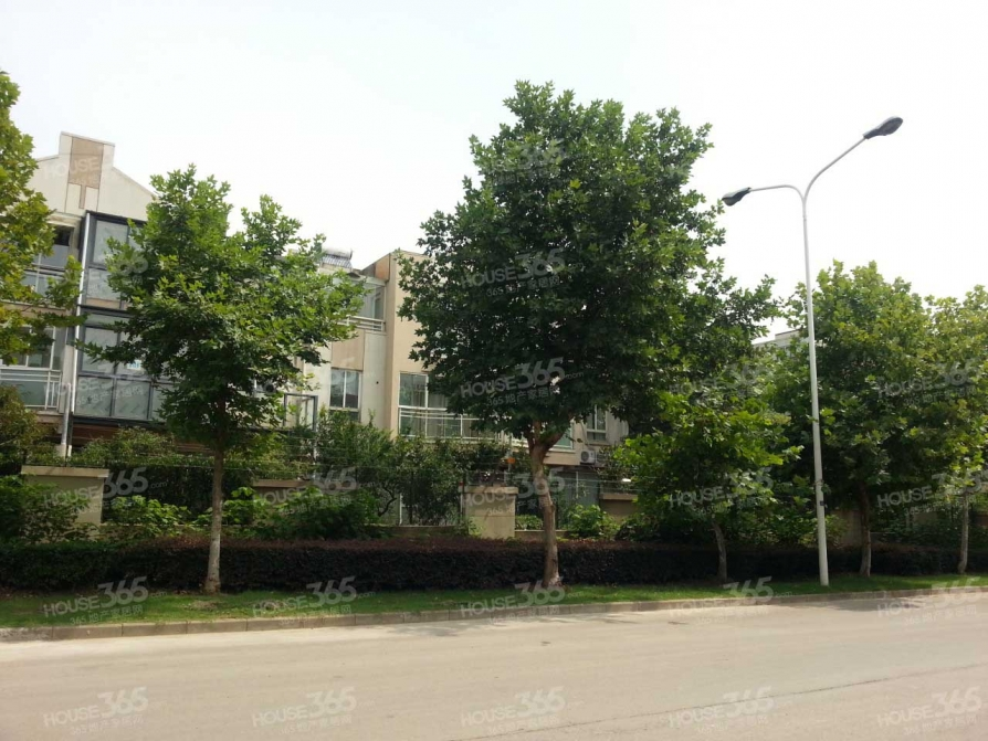 运盛美之国5室2厅3卫224平米豪华装产权房2009年建