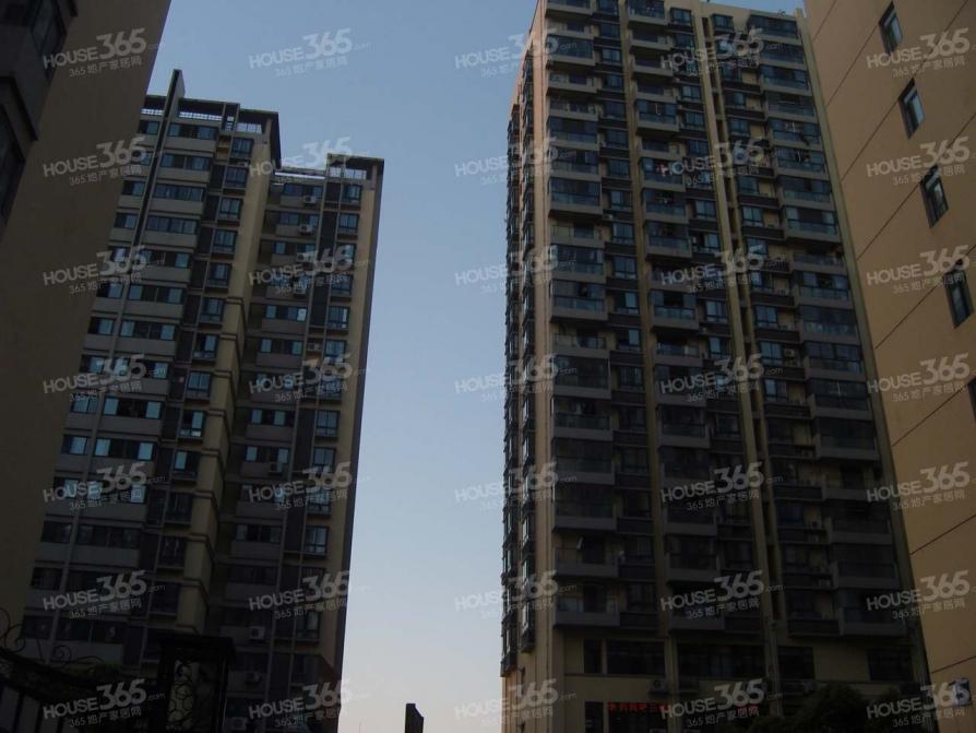 绿地瀛海大厦,创智广场,精装两房,拎包入住,随时看房,急租