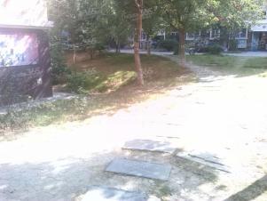 兴园小区实景图