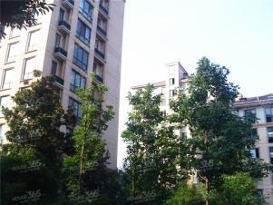 文锦新城二室二厅1卫,月租金1750包物业!