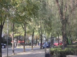 紫薇田园都市实景图