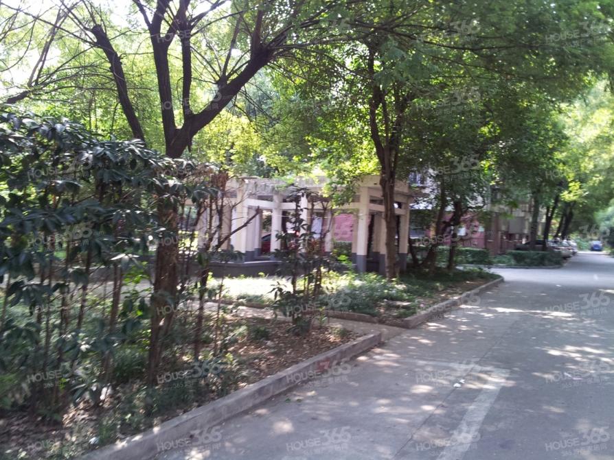 沁园新村 精装2房 黄金楼层 地铁房 学区房 低价急售 近曹张 芦庄