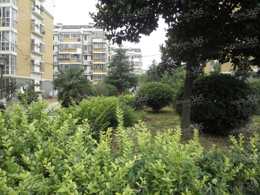 燕华花园62.1平米174万元