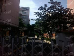 明珠苑附近民政厅干休所3室1厅1卫80㎡整租简装