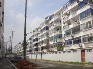 西塘新村,苏州西塘新村二手房租房