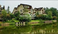 隆鑫花漾的山谷三期,重庆隆鑫花漾的房子三期10的的江桥山谷年别墅图片