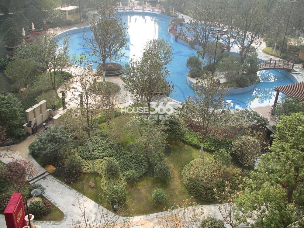 雅居乐滨江国际小区景观(12.26)