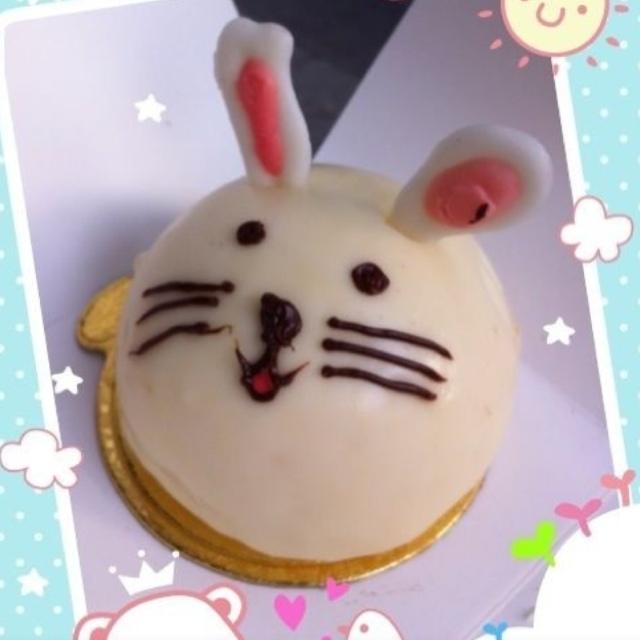 卡普兰的小动物蛋糕,好萌